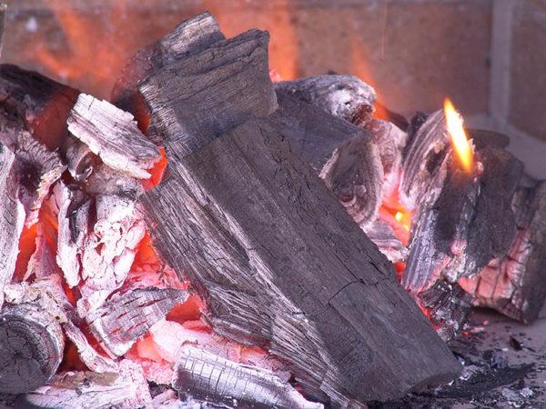 Уголь для шашлыка на мангале: сколько стоит, какой лучше (кокосовый, древесный, прессованный)